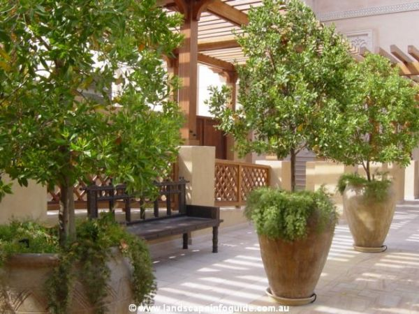 Large pots landscape ideas landscape design ideas for Large patio design ideas
