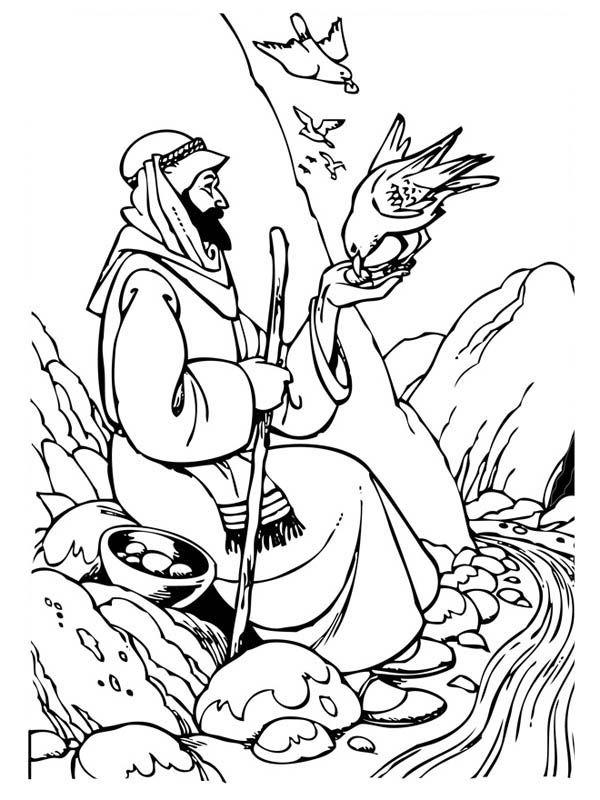 Elijah Elijah Accept Food From Ravens Coloring Pages Elijah