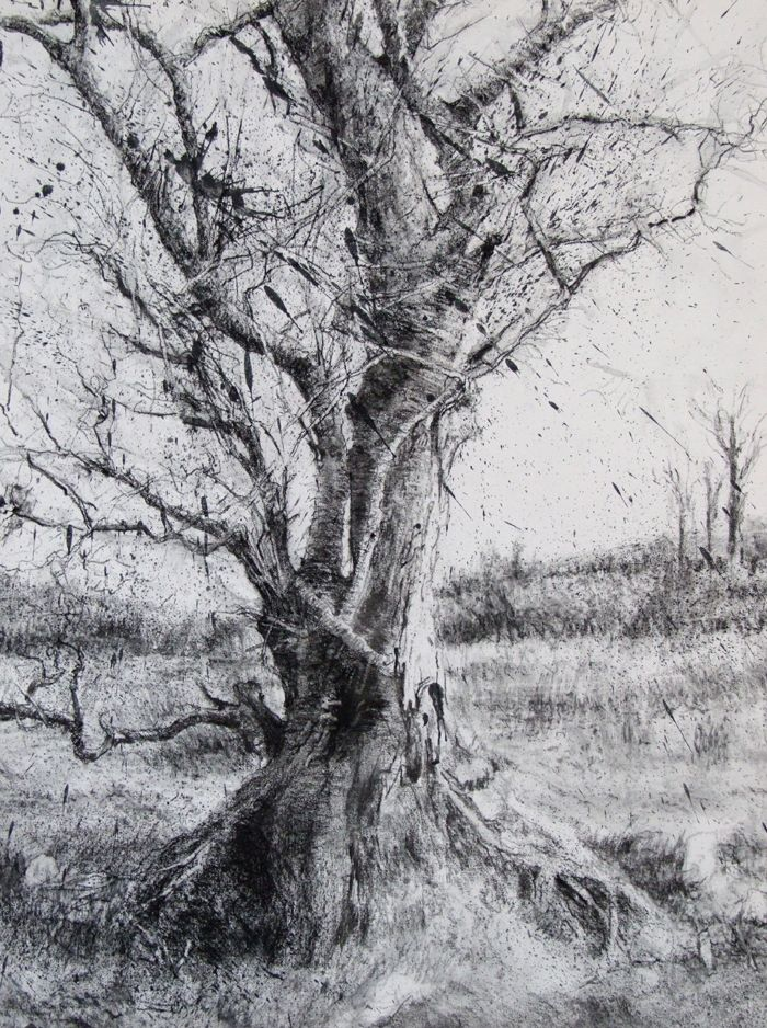 Michael Wann (charcoal and wash on canvas) | Landscape ...