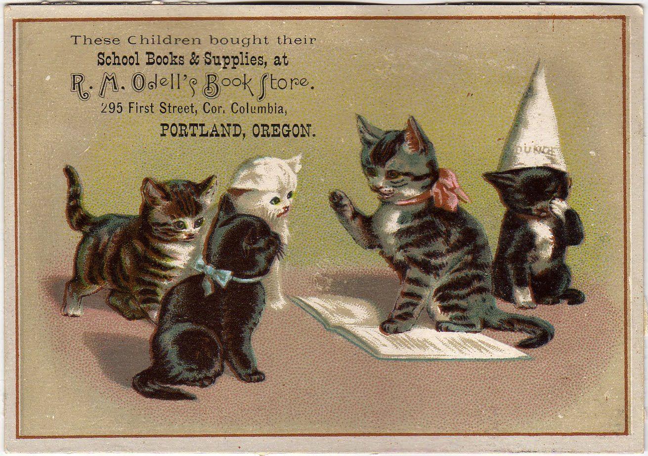 Victorian Trade Card Cats Illustration Cat Art Cats