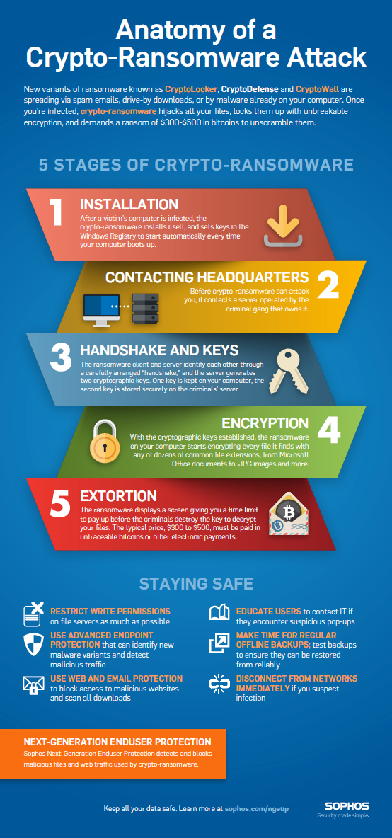anatomy-of-a-ransomware-attack | Cyber Issues | Pinterest | Anatomy ...