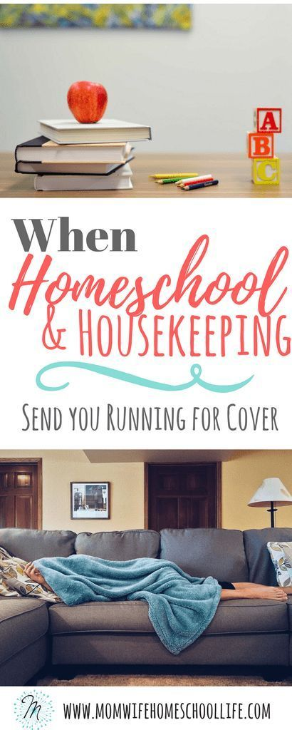 Photo of When Homeschooling And Housekeeping Send You Running For Cover