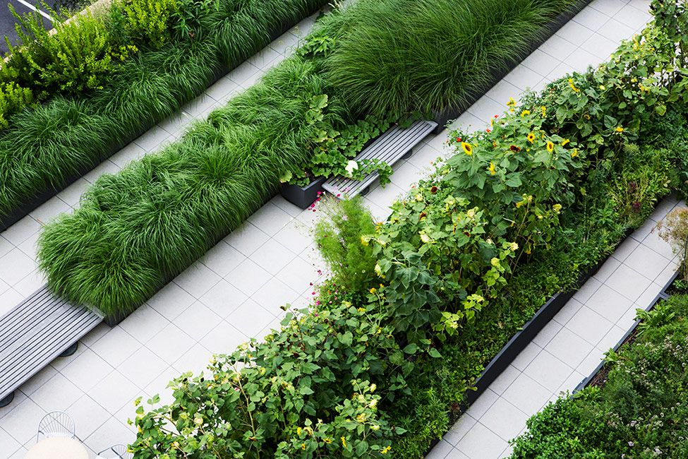 geometry in gardens and parks Namba parks, hanging gardens in osaka  because of the undulating geometry of the park reflects the subtle route in traditional japanese gardens.
