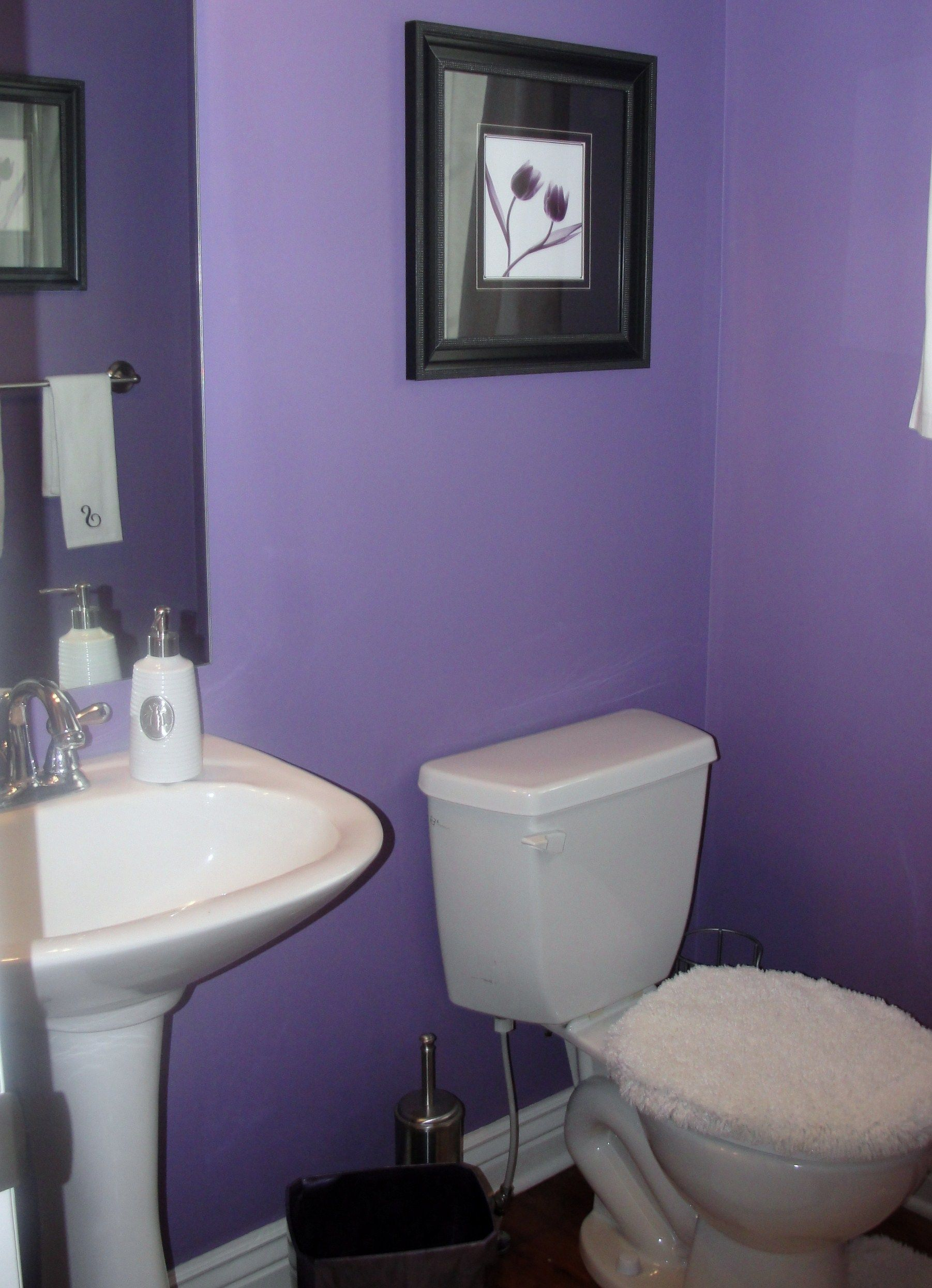 Powder Room Paint Color Valspar 274A 5 Majestic Purple Interior Flat