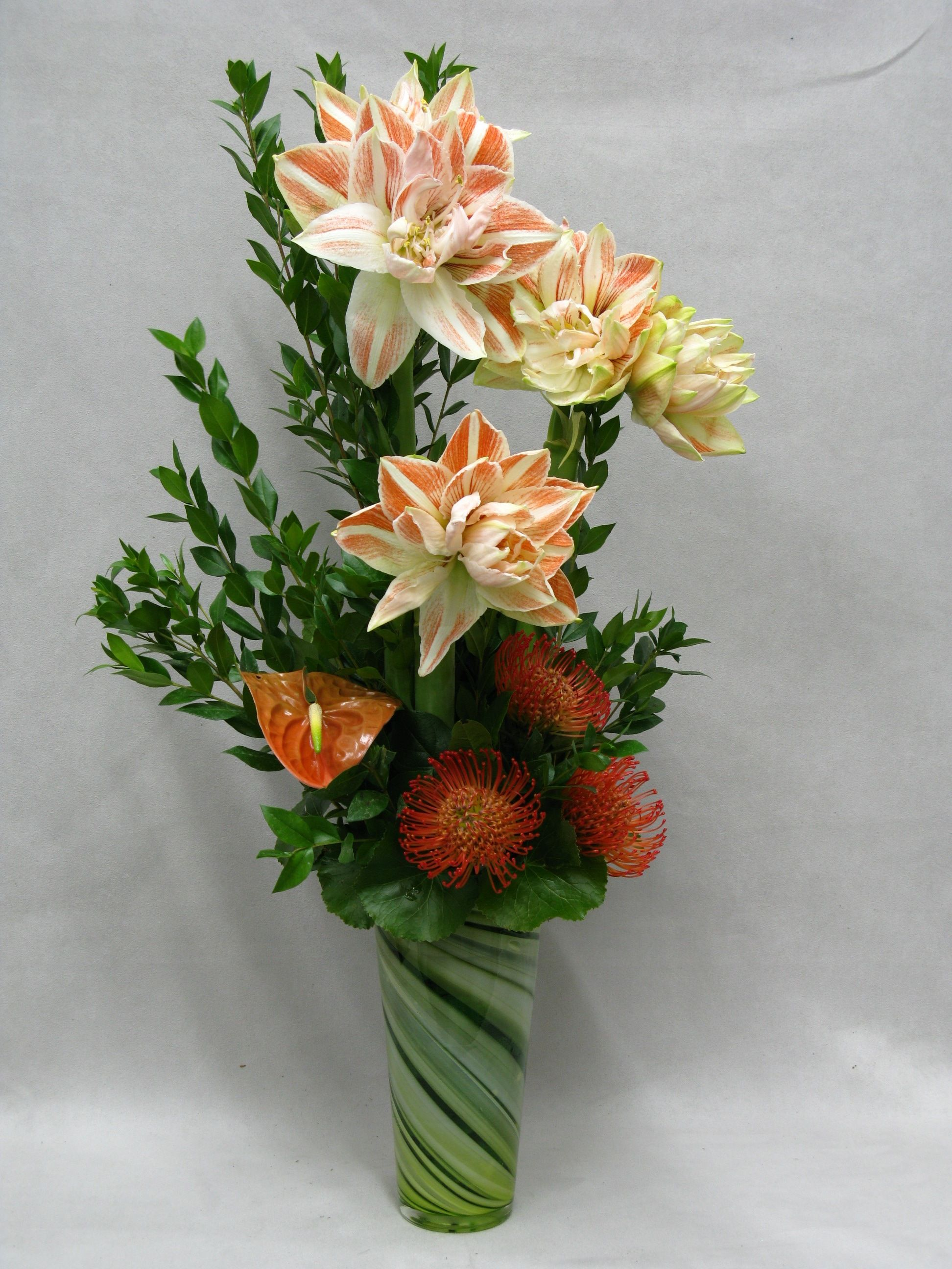 A beautiful and statuesque arrangement featuring blooming amaryllis a beautiful and statuesque arrangement featuring blooming amaryllis will make you stand out from the crowd izmirmasajfo Images