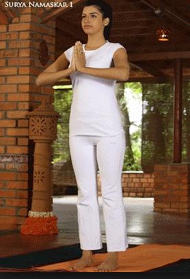 yoga sun salutations  surya namaskar yoga poses yoga