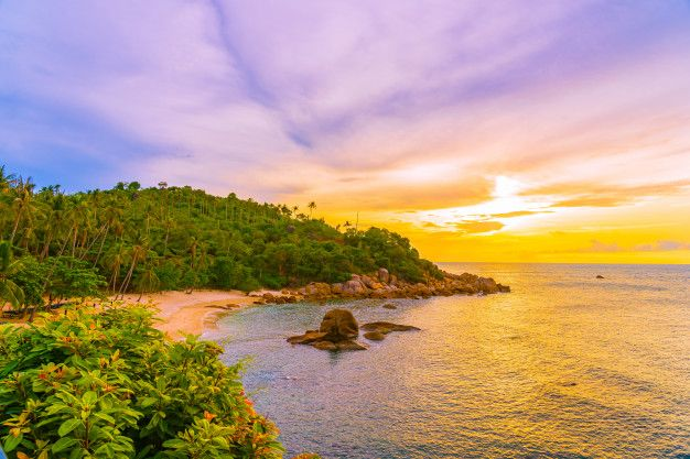 Hermosa playa tropical al aire libre mar... | Free Photo #Freepik #freephoto #arbol #viajes #agua #verano