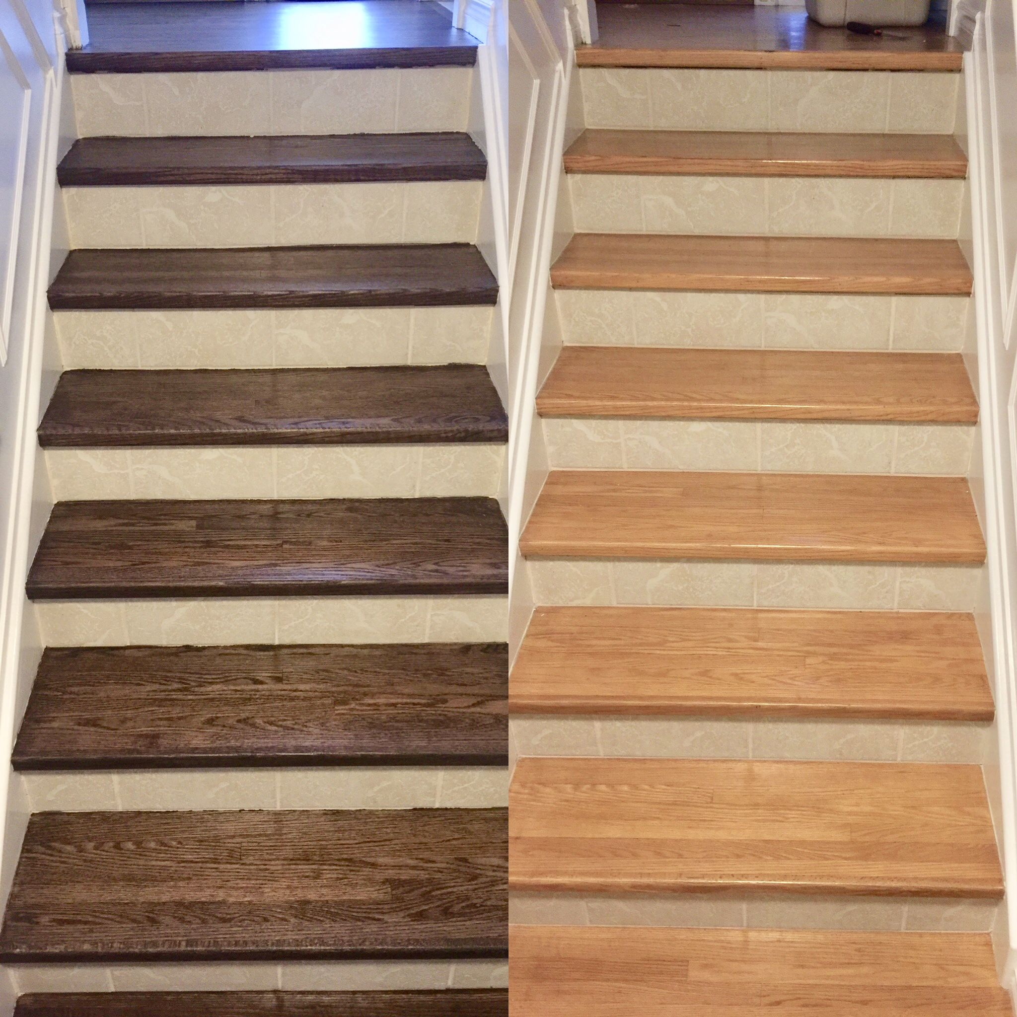 awesome wood staining collection stunning floors home picture depot of and concept sanding best