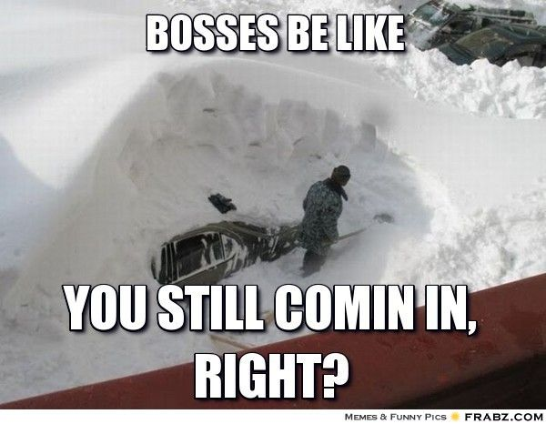 Bosses Be Like Funny Winter Pictures Weather Memes Snow Humor