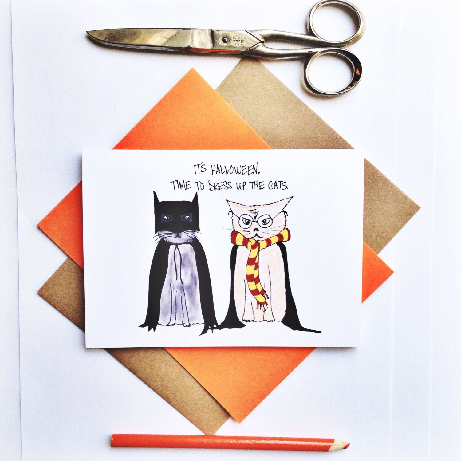 Funny Halloween Card Its Halloween Time To Dress Up The Cats