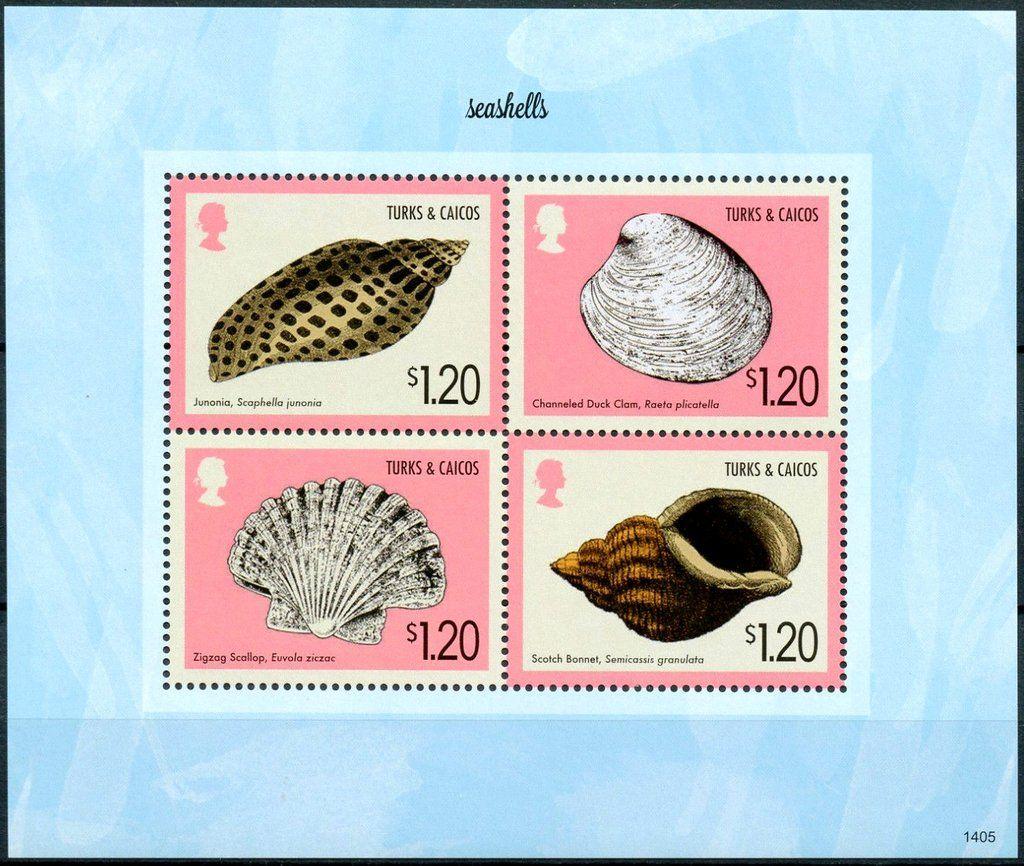 Stamp: Various Seashells (Turks and Caicos Islands) (Seashells) Mi:TC 1952-1955KB,Sn:TC 1533