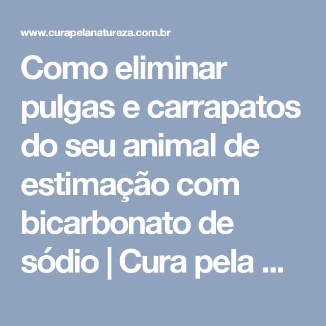 como eliminar pulgas e carrapatos do seu animal de