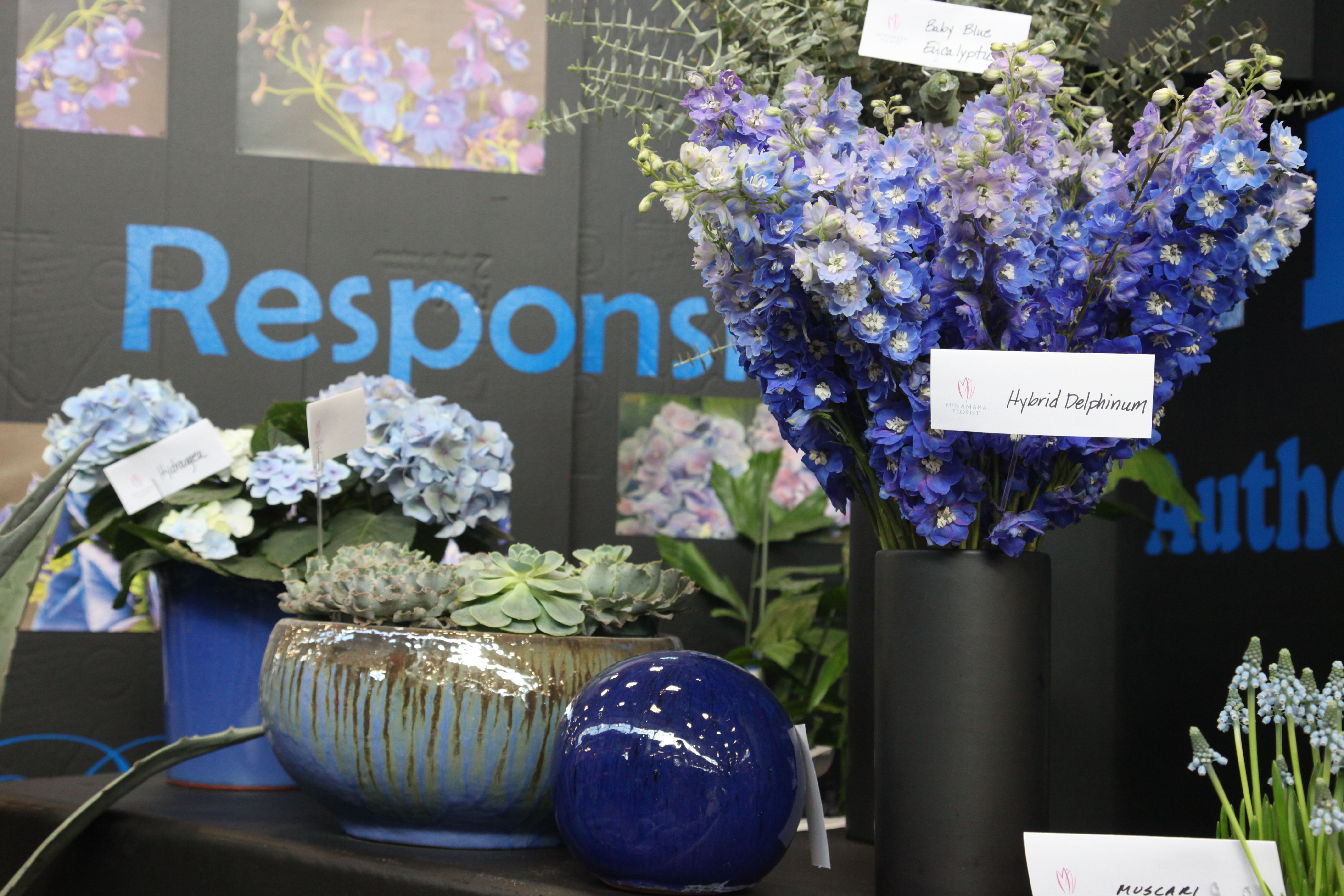 The 2014 Indianapolis Flower And Patio Show Is One Of The Best Shows Of The  Year