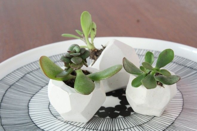 A Wonderful DIY For How To Make These Cute Little Wedding Favors Using DIY  Clay Planters