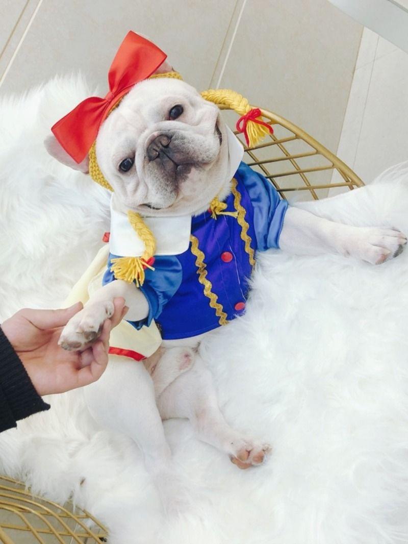 Princess Snow White Costume Dress For French Bulldog Toddler Dog