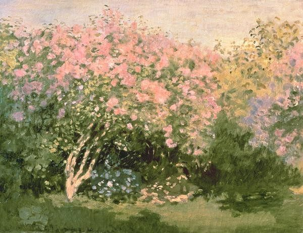 Lilac In The Sun, 1873 Giclee Print Poster by Claude Monet Online On Sale at Wall Art Store – Posters-Print.com