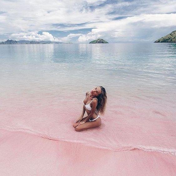 Pink Beach, Komodo National Park, Flores Island, Indoneseia. The Komodo National Park cruises & adve...