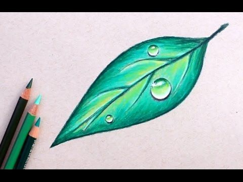 Water Drop on Leaf Drawing Tutorial