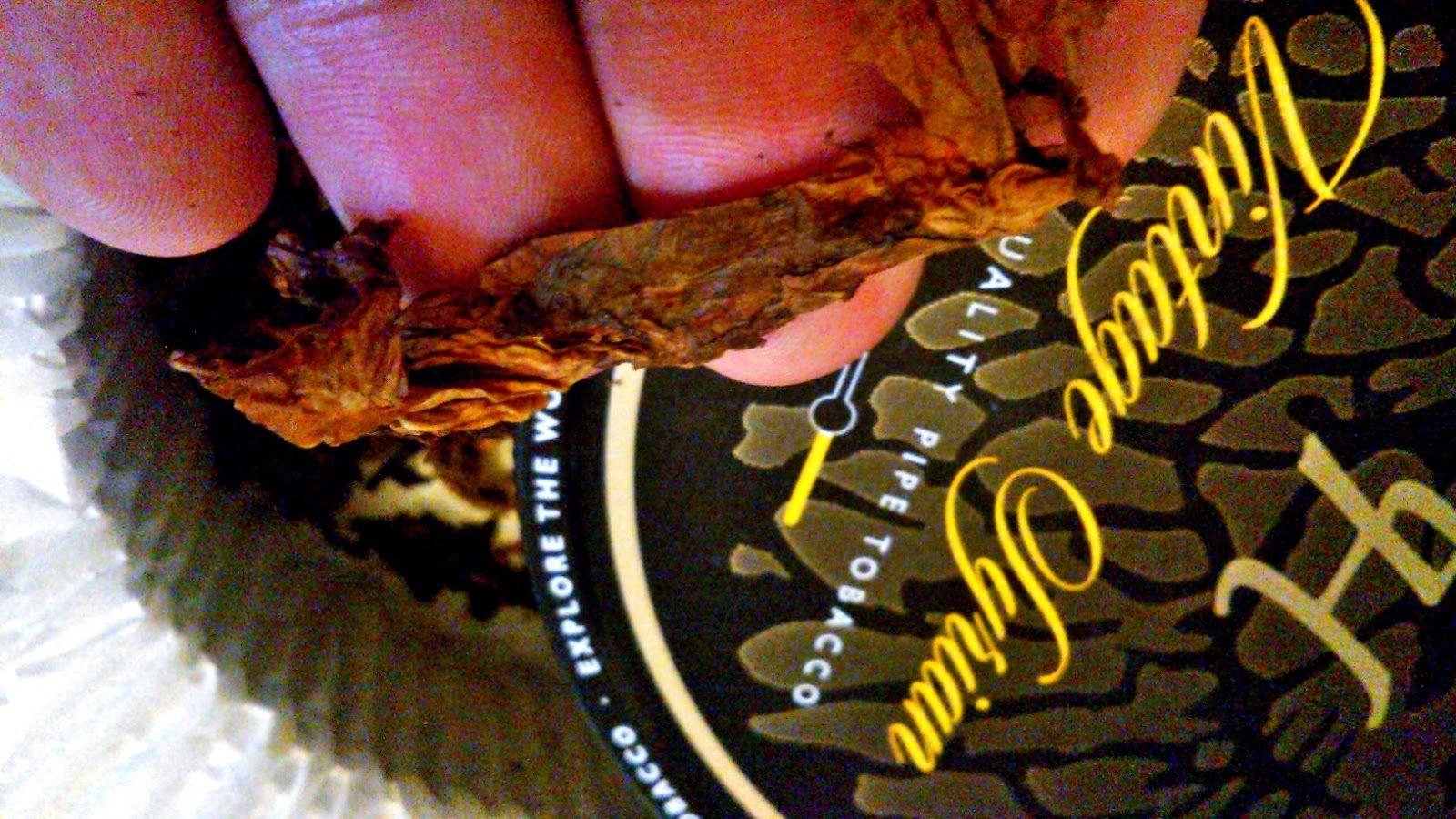 Sabor de Tabaco: kentucky
