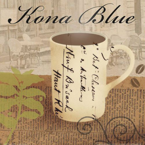 Lisa Van Verthloh Kona Blue Fertig Bild 30x30 Wandbild Kueche Cafe