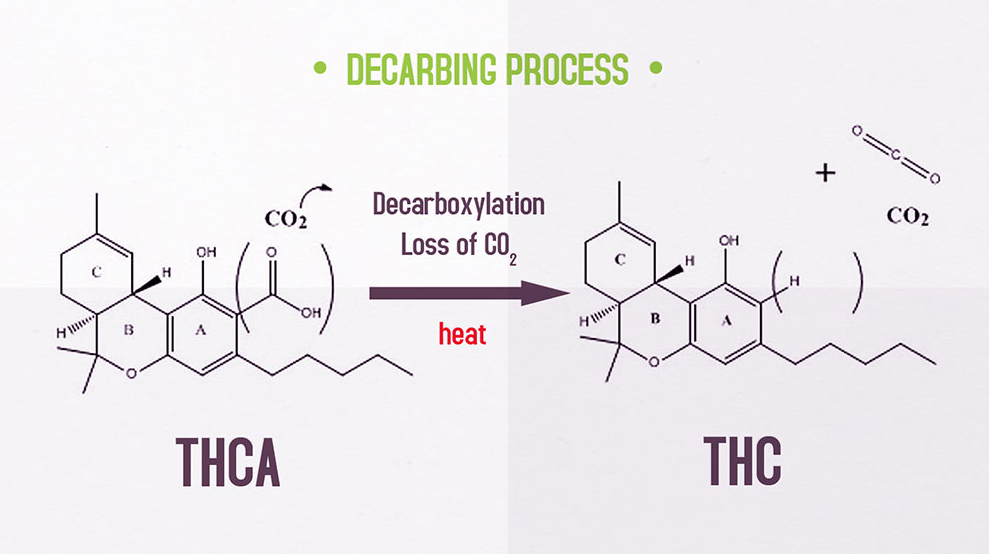 Decarboxylation: How to Decarb Weed [Temperature Chart
