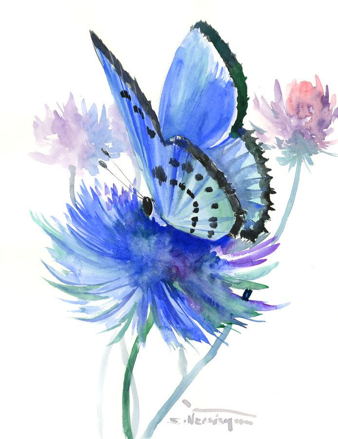 Holly Blue Butterfly Original Watercolor Painting 14 X 12in Sky