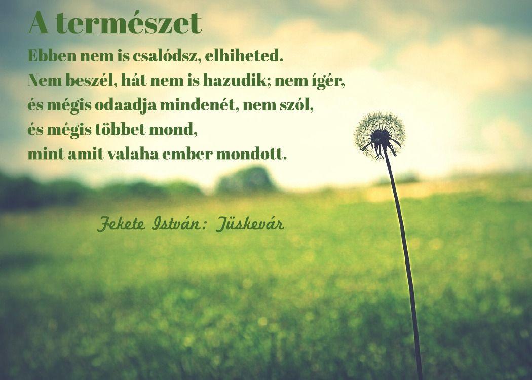 természettel kapcsolatos idézetek Egészség motiváció: Fekete Istvántól | Motivational quotes