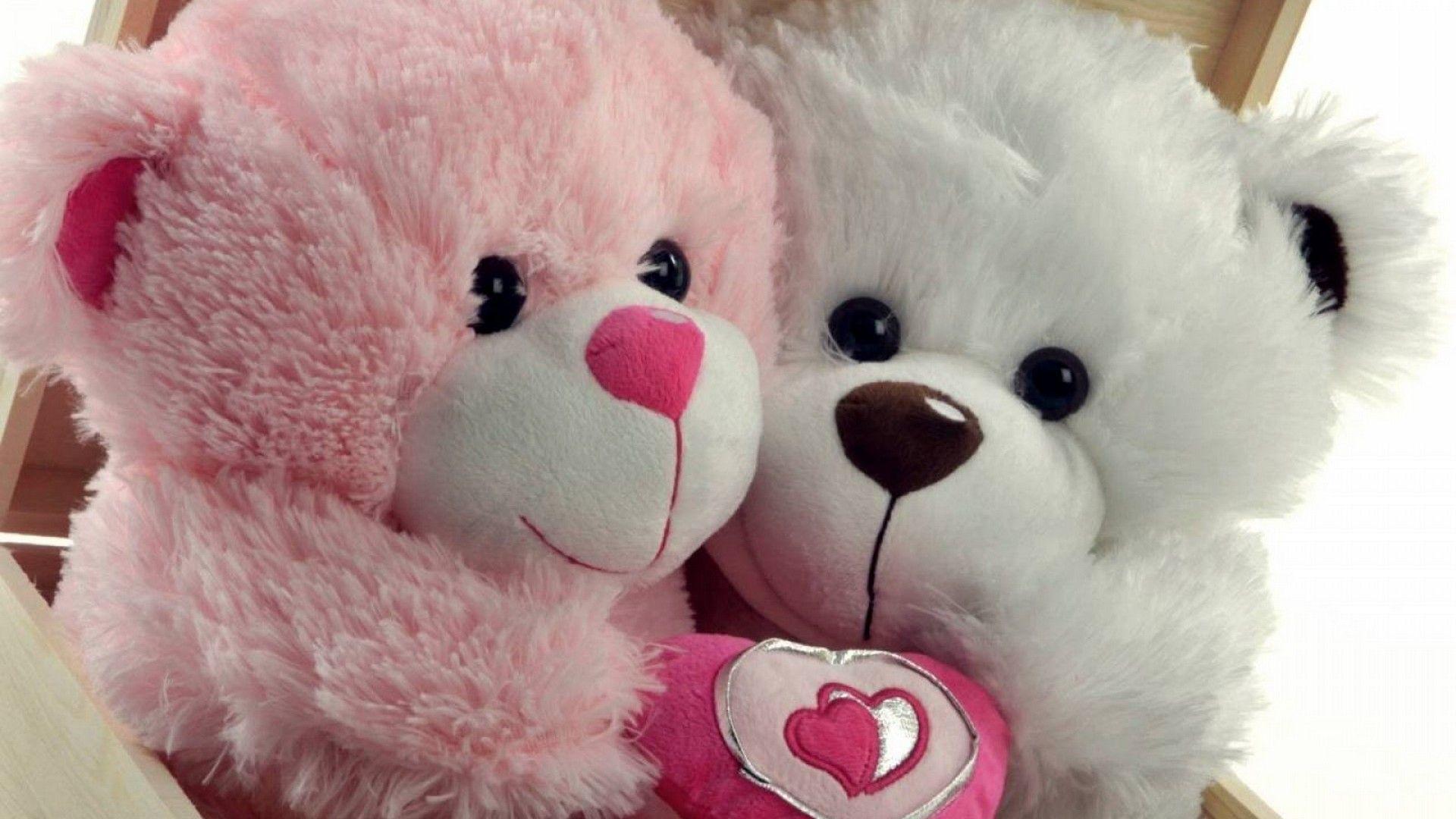 Teddy Bear Pics