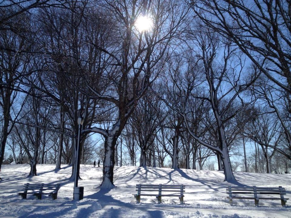 Winter land -iphone shot- by monica mendoza