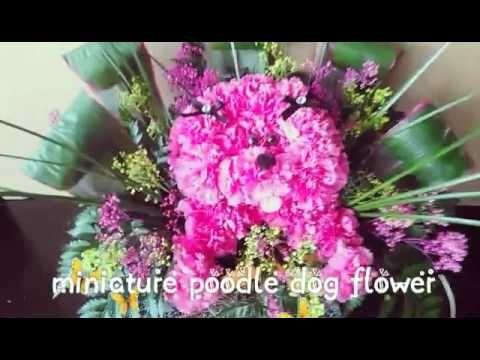 Youtube Perrito De Flores Naturales Como Hacer Paso A Paso