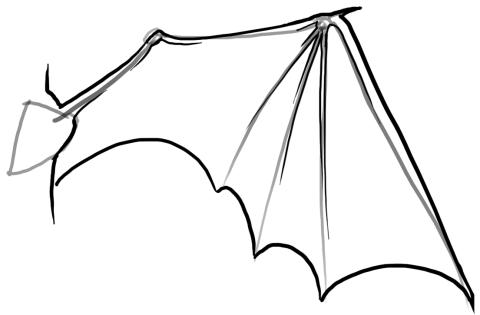 Dragon Wing Base | Dragon Morgue | Pinterest | Dibujar, Dibujo y Cosas