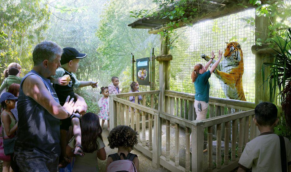 Woodland Park Zoo Seattle Wa Woodland Park Zoo Woodland Park Zoo Babies
