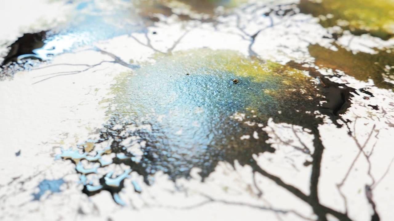 L Aquarelle Canson Heritage Par Serge Di Meo Approche Technique