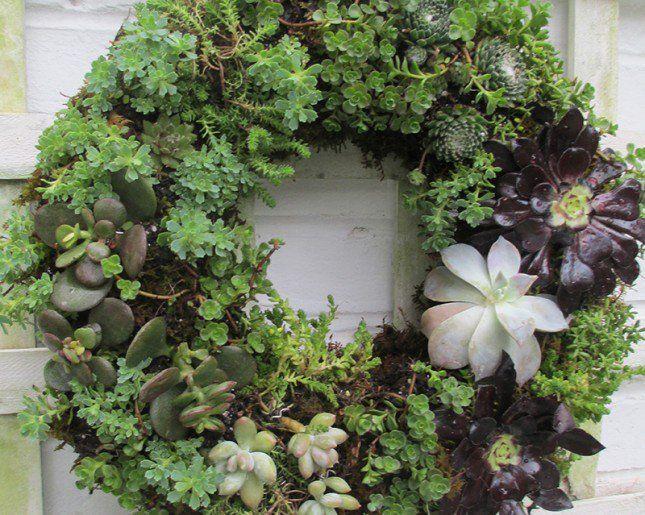 jardin vertical casero c mo hacer un jard n el blog de los mejores consejos y jardineria alicante 4 originales ideas de jardines verticales caseros with como hacer un jardin  vertical de interior