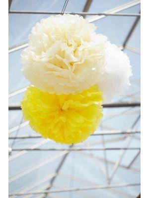 Pom yellow