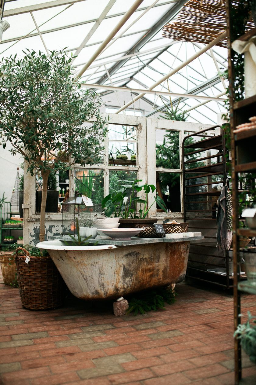 Cute greenhouse that get's a nice dreamy vintage\/shabby ...