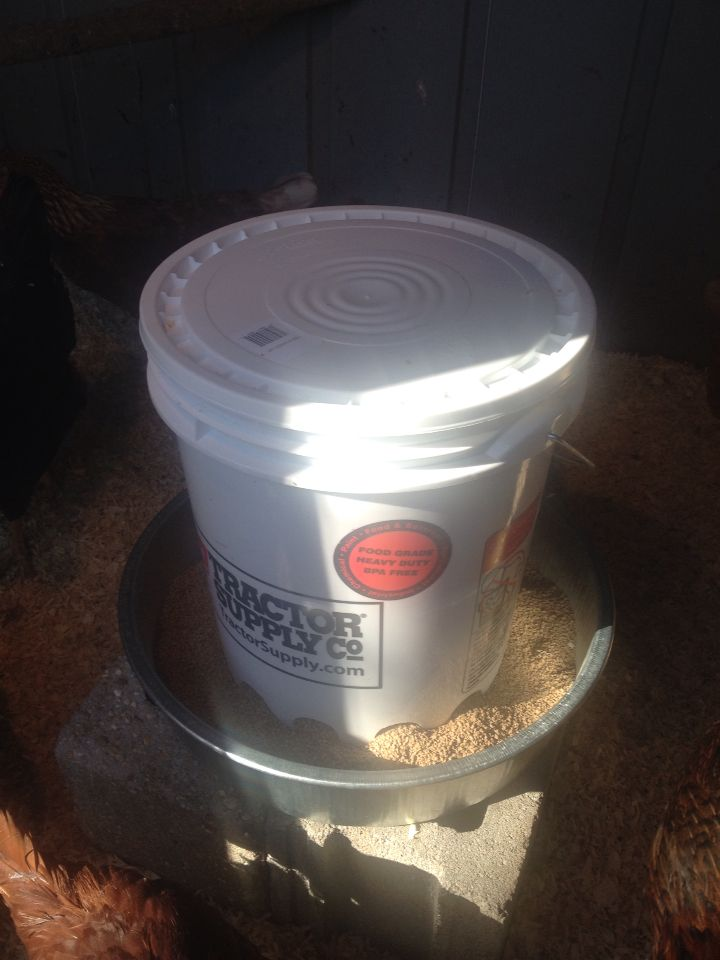 My 10 30 Chicken Feeder A Five Gallon Bucket With Lid A 3 1 2 Gallon Hog Pan 3 Bolts Nuts And Washers Chicken Feeder Nuts And Washers Five Gallon Bucket