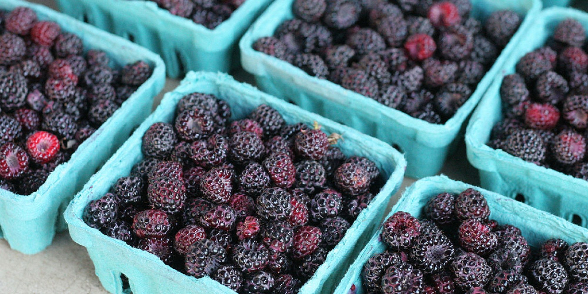 What S The Difference Blackberry Vs Black Raspberry Blackberry Nutrition Raspberry Grape Nutrition