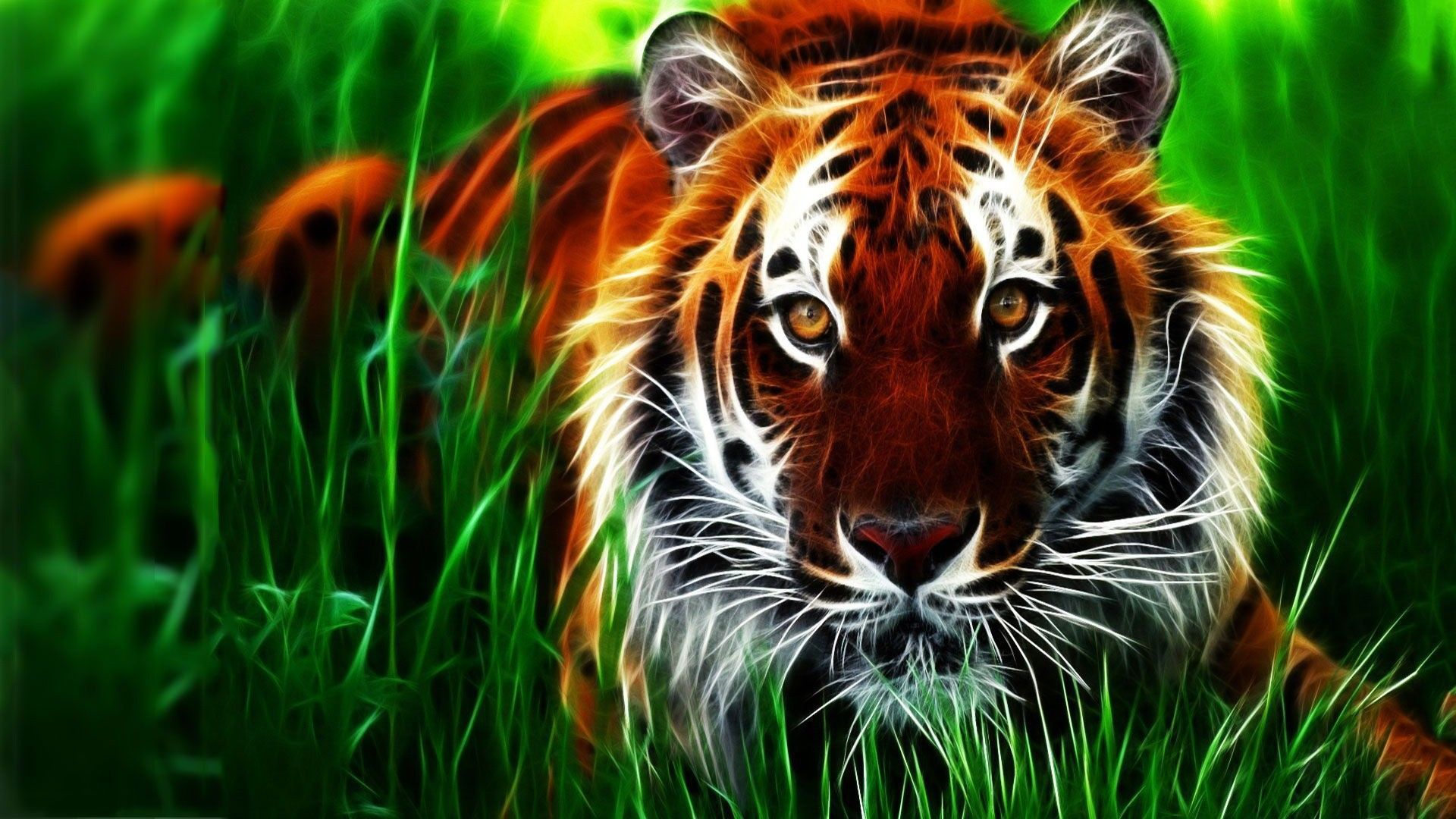 Wallpaper Animal Hd Descargar In 2020 Nature Desktop Wallpaper Animal Wallpaper Tiger Images