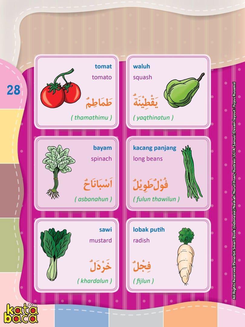 Baca Online Kamus Pintar Bergambar 3 Bahasa Indonesia Inggris Arab Kata Baca Bahasa Kartu Flash Membaca