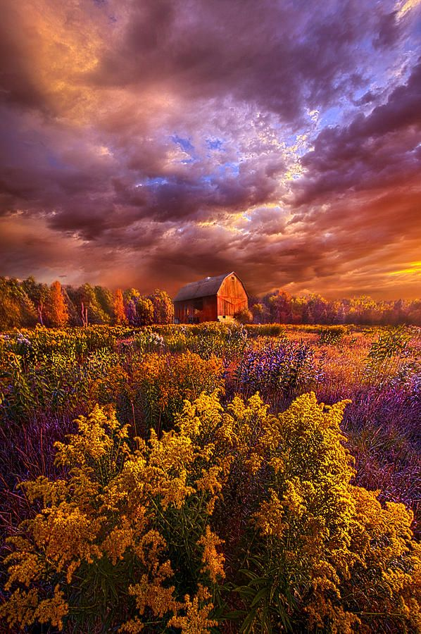the days are seldom long ... phil-koch