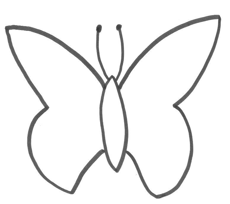basic butterfly template - i use this to make chocolate butterflys ...