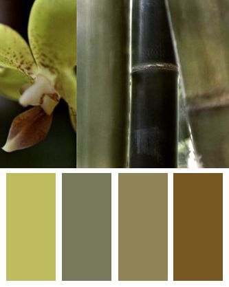 Bamboo III Color Palette  Color Palettes  Bedroom colors