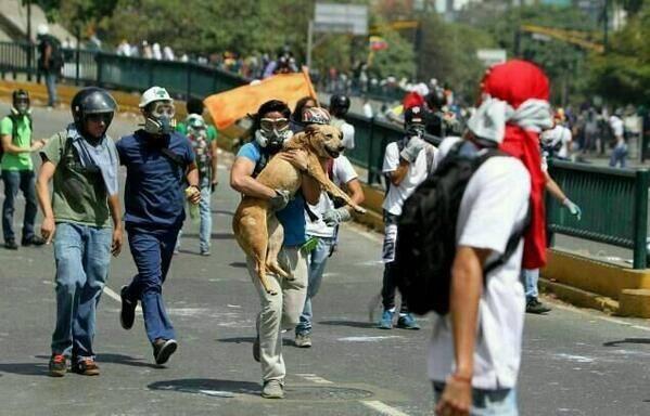 Sasha Jimenez On Twitter Caracas Venezuela Scenes