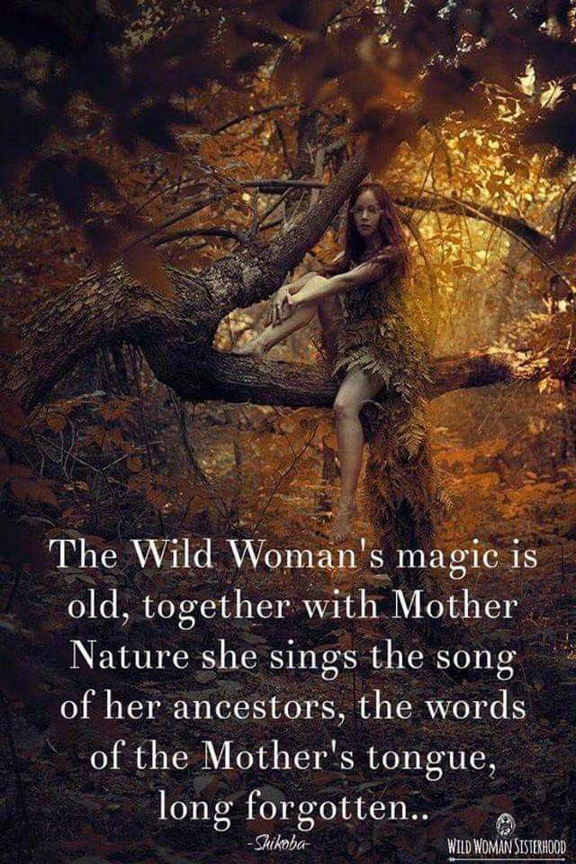 Pin by Julie Bennett on Mother Earth (With images) | Wild ...