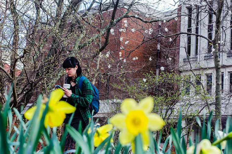 Student walks out of Alden Library and past newly blossoming flowers