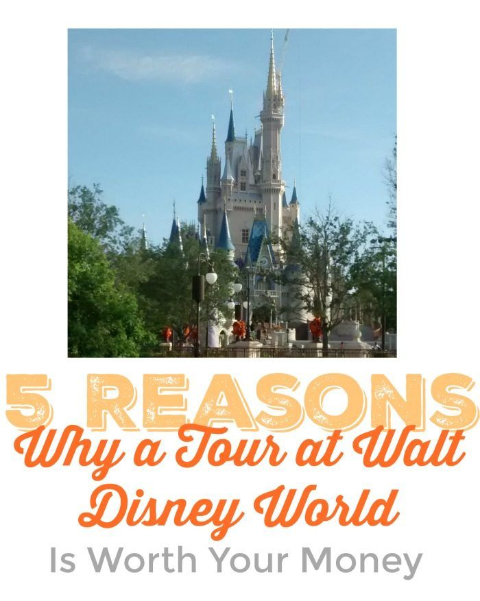 Disney World Tips | Is a Disney World Tour worth the cost?  (We've been on several and I'd have to say yes (depending on the tour). But if you're not sure, or would like more details, be sure to check out this post.
