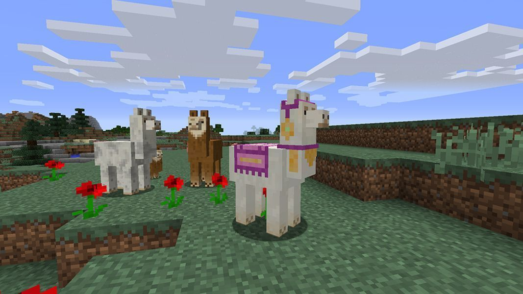 Minecraft 1 11 Update To Add Llamas Mansions And Maps Minecraft Minecraft 1 Minecraft House Designs