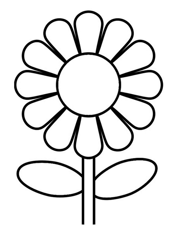 i have download beautiful sunflower coloring page - Sunflower Coloring Pages Print
