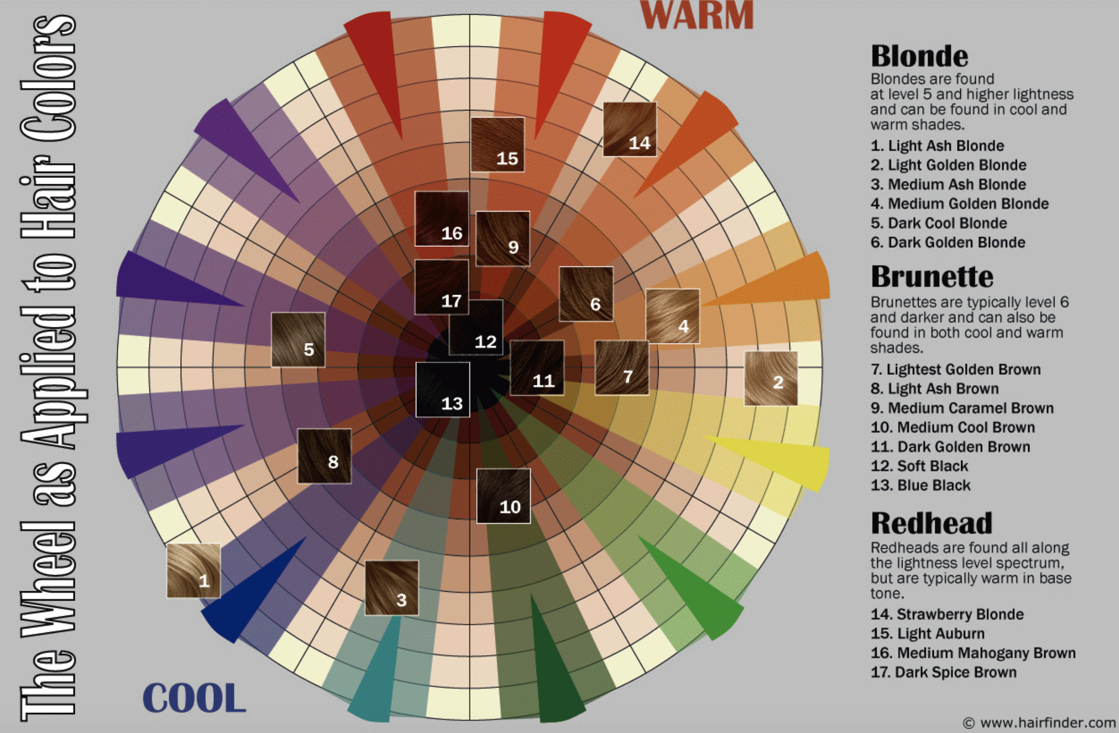Hair Color Wheel The Best Color For You Is Within 2 Shades In 2020 Hair Color Wheel Matrix Hair Color Clairol Hair Color